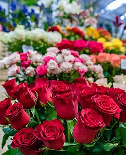 Virágözön Újbuda szívében